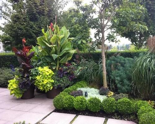 canna lily home design ideas