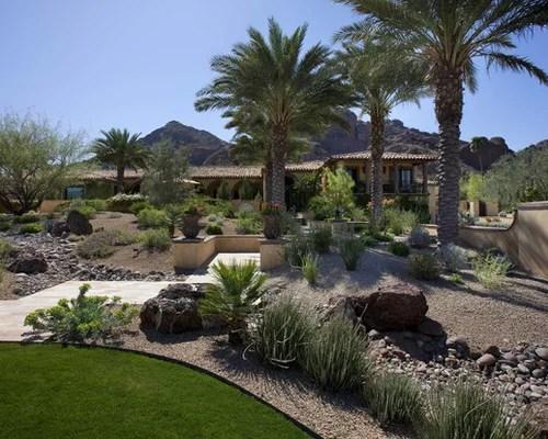 backyard desert landscaping home