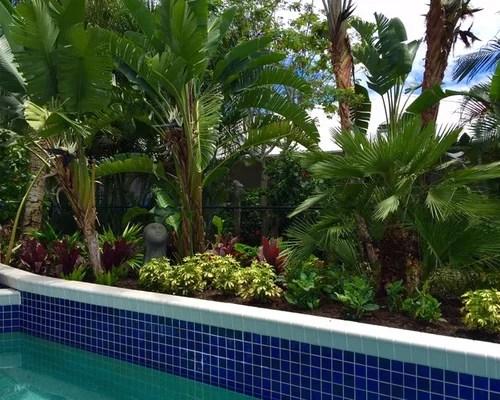 small tropical formal garden design