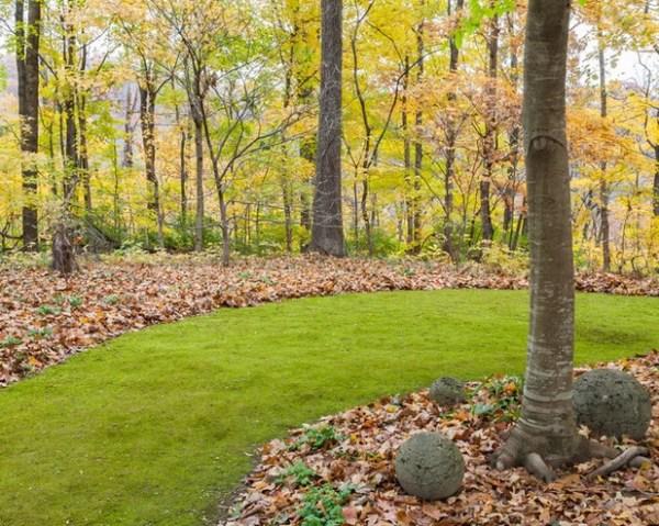 7 -maintenance lawn alternatives