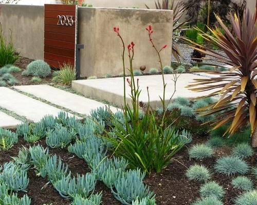 Southern California Gardening Houzz