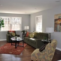 Living Room Idea Images Interior Design Small Flat Olive Green Ideas Photos Houzz Mid Sized Contemporary Formal And Enclosed Medium Tone Wood Floor