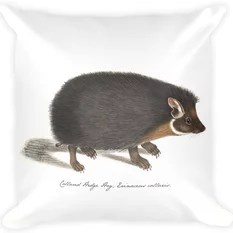 Ragdoll Cat King Of His Domain Watercolor Throw Pillow
