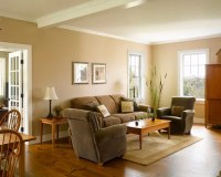 Tan Color Walls Ideas, Pictures, Remodel and Decor