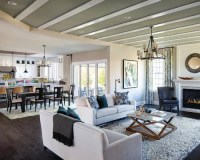 DC Metro Living Room Design Ideas, Remodels & Photos