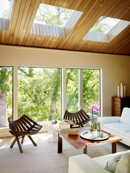 modern living room ideas on a budget burgundy curtains skylight ceiling home design ideas, pictures, remodel and ...