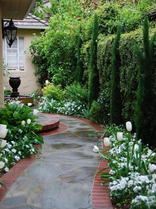 dwarf evergreen landscaping