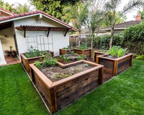 Best Raised Vegetable Garden Layout Design Ideas & Remodel