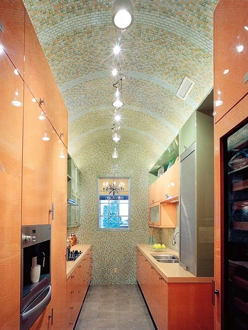 Best Curved Ceiling Design Ideas  Remodel Pictures  Houzz