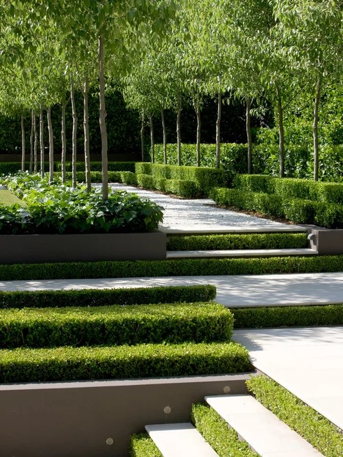 transitional landscape ideas design