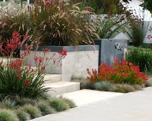 Native Australian Garden Design Ideas & Remodel Pictures Houzz
