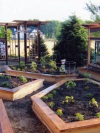 Indianapolis Landscape Design Ideas, Remodels & Photos