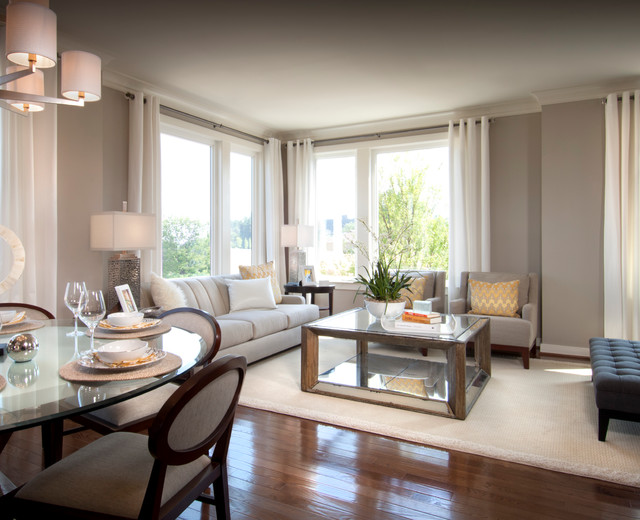Aster transitional-living-room