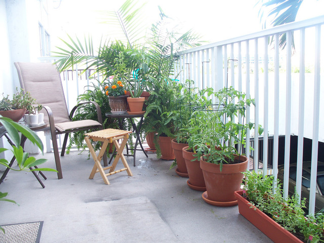 Small Gardens patio