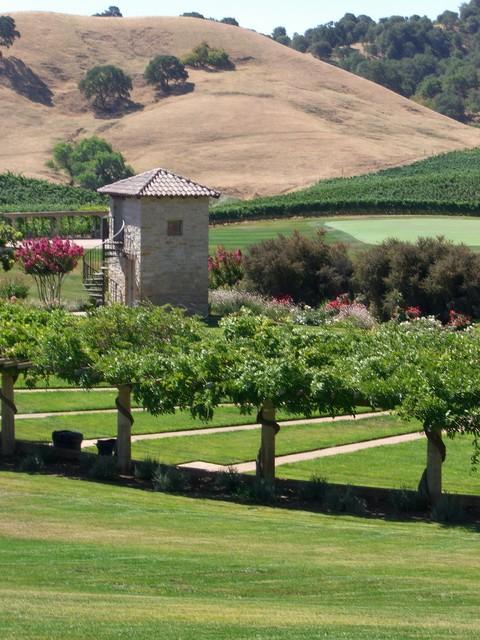 italian wine country estate