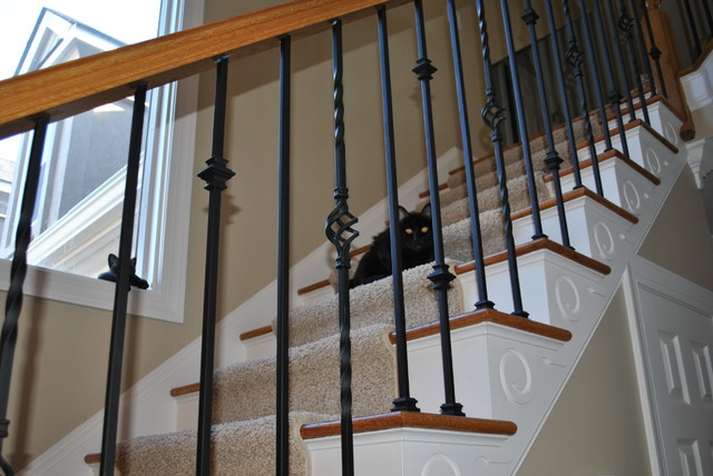 Wrought Iron Balusters  Traditional  Staircase