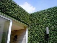 Vertical Garden Wall | Artificial Hedge Panels - Modern ...