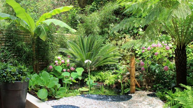 Riviera Gardens. Architecte Paysagiste Côte d'Azur