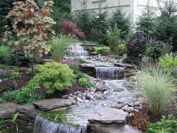 backyard stream ponds - eclectic