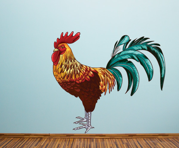 Rooster Vinyl Wall Decal RoosterUScolor001  Reviews  Houzz