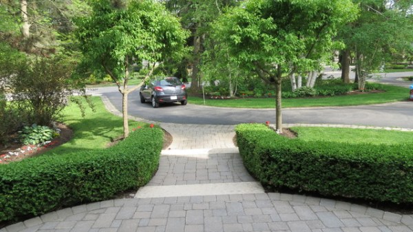 formal hedges semi circle driveway