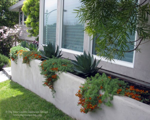modern landscape and planters