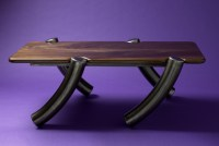 Black Walnut Rectangular Coffee Table - Modern - Coffee ...