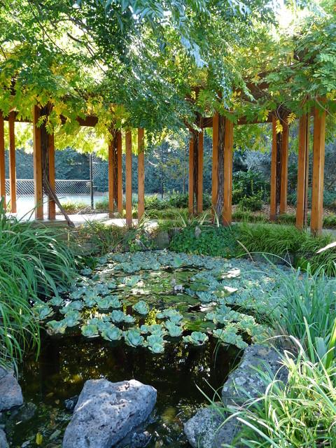 wisteria pergola and ponds - traditional