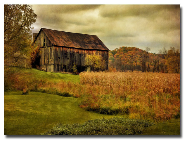Trademark Fine Art Old Barn On Rainy Day Canvas Art By