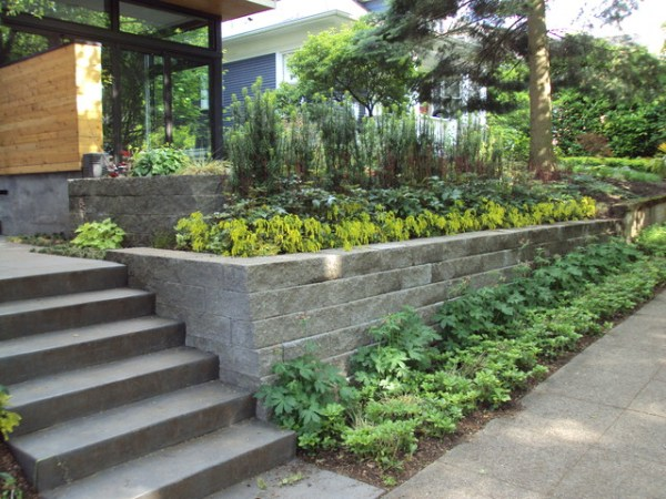 noland landscape design - modern