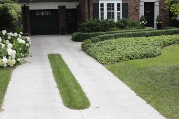 25+ Landscape Grass Driveway Pictures and Ideas on Pro Landscape