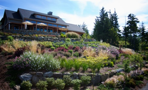 hillside garden - contemporary