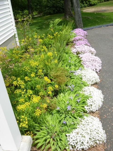 perennial garden design  driveway border  Contemporary  Landscape  boston  by Gardens of