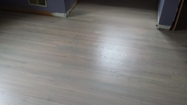 Modern Light Grey Wood Flooring  Bedroom  Nashville  by