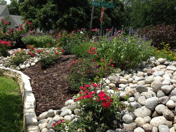 privacy berm landscape bed - traditional