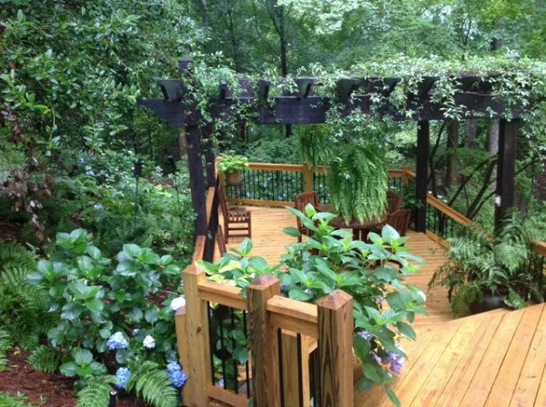 landscaping slope and shade
