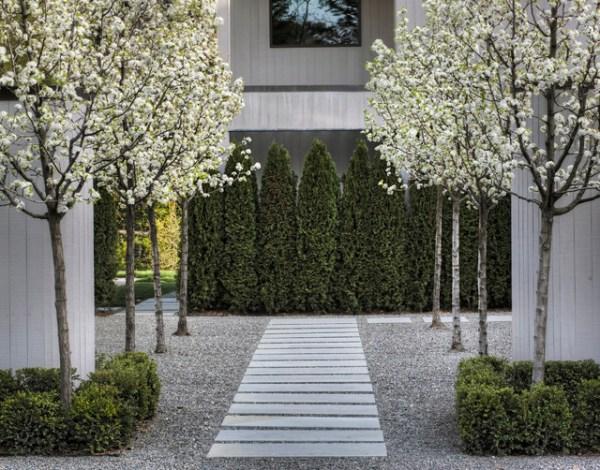 entry courtyard - contemporary