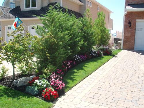 8 drought-tolerant plants line