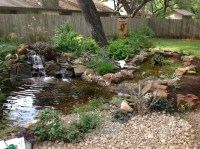 Michael's Backyard Pond with Waterfall and Bog Filter ...