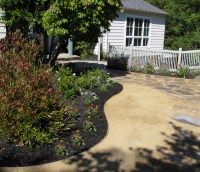 Curved bed in Contemporary Garden - replace lawn with ...