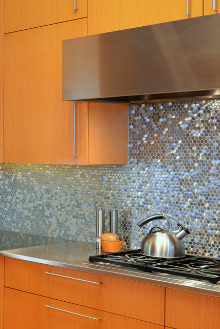 Stainless Steel Sparkles on Backsplash  Contemporary