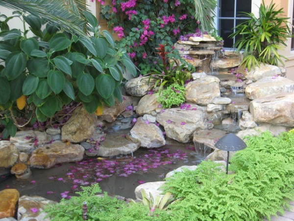 tropical waterfall garden pond