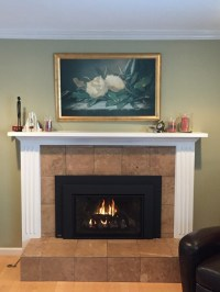 Indoor Fireplace Inserts - Traditional - Family Room - san ...