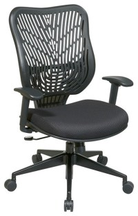EPICC SpaceFlex Back Office Chair, Raven Back, Raven Mesh ...