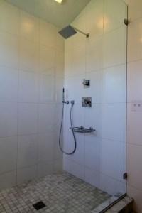 Delta Vero Shower with Diverter and Hand Shower ...