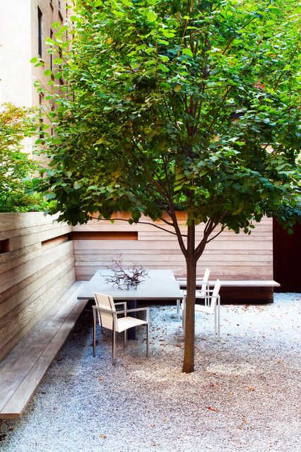 Pretty Trees for Patios Paths and Other Tight Spots