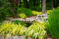 Shade Gardens - Rustic - new york - by Bloom Landscape ...
