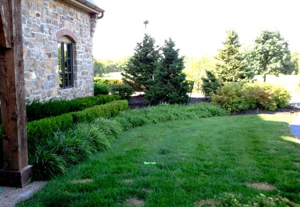 layered landscape planting - traditional