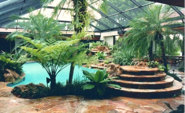 tropical environment in south florida