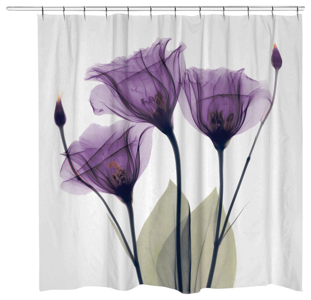 Purple Flower Shower Curtain  Contemporary  Shower